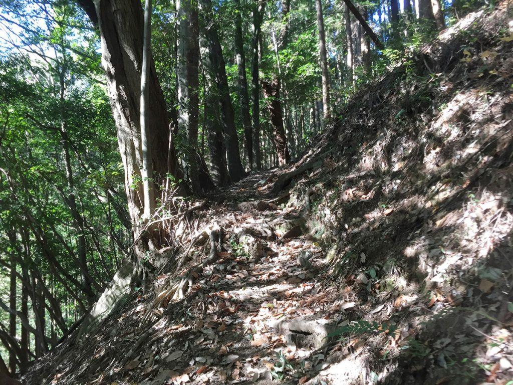 石谷山 八十八石 ハイキングコース