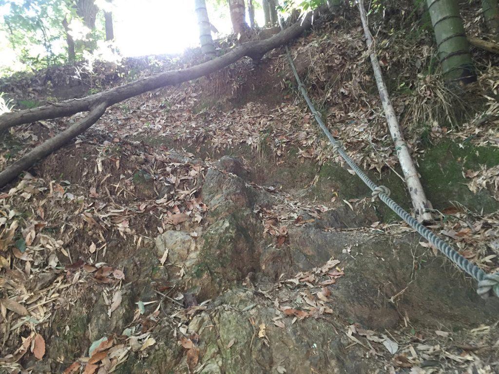 石谷山ハイキングコース 暗い道が続く