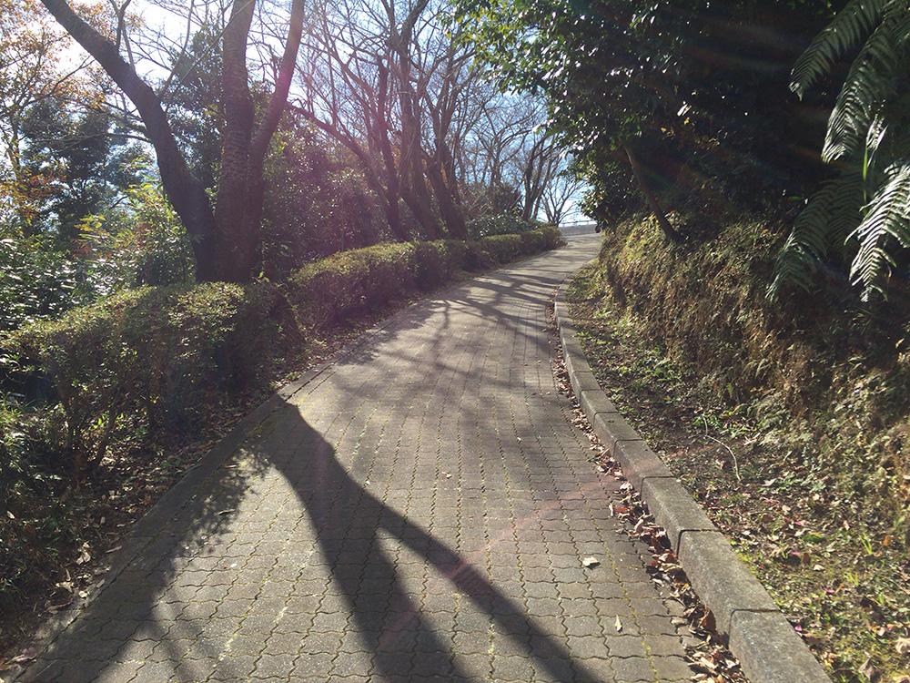 日本平ハイキングコース-駐車場からまた歩く