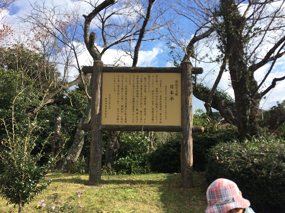 日本平の様子