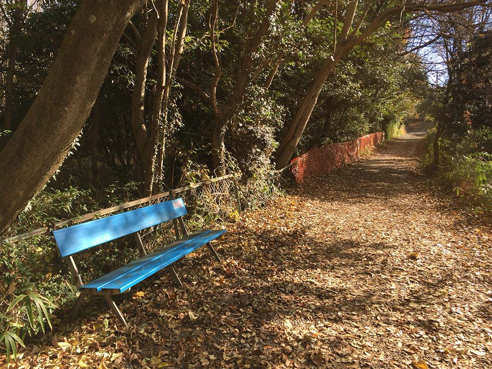 日本平ハイキングコース-休憩場所が