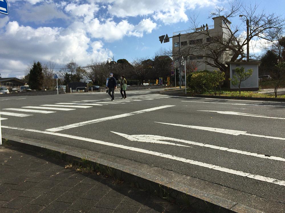 日本平ハイキングコース-日本平ホテル近く