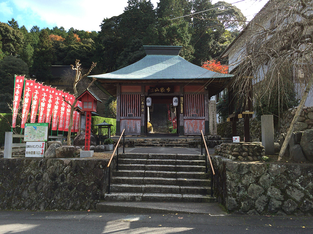 nihondaira-hikingcourse43
