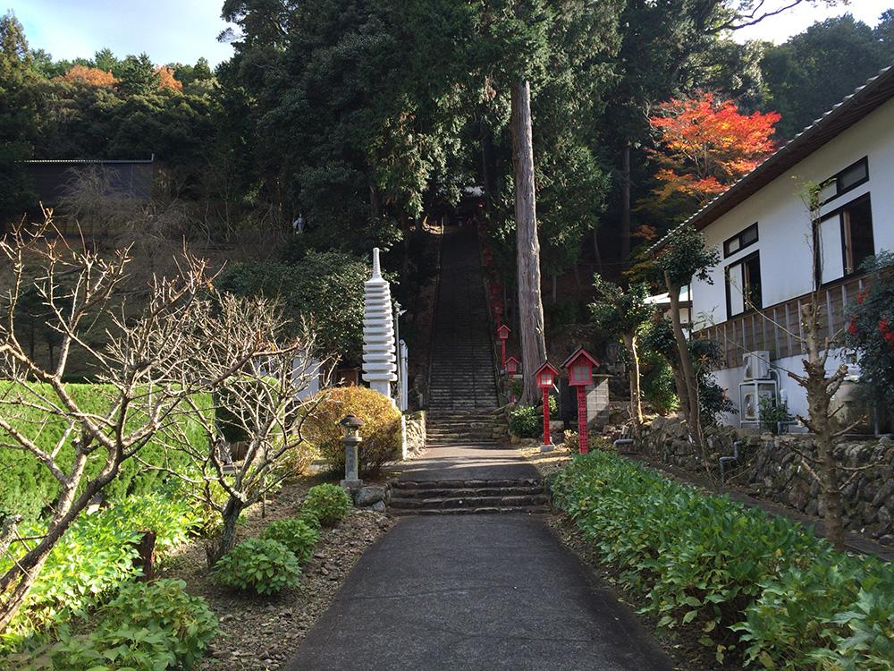 nihondaira-hikingcourse47