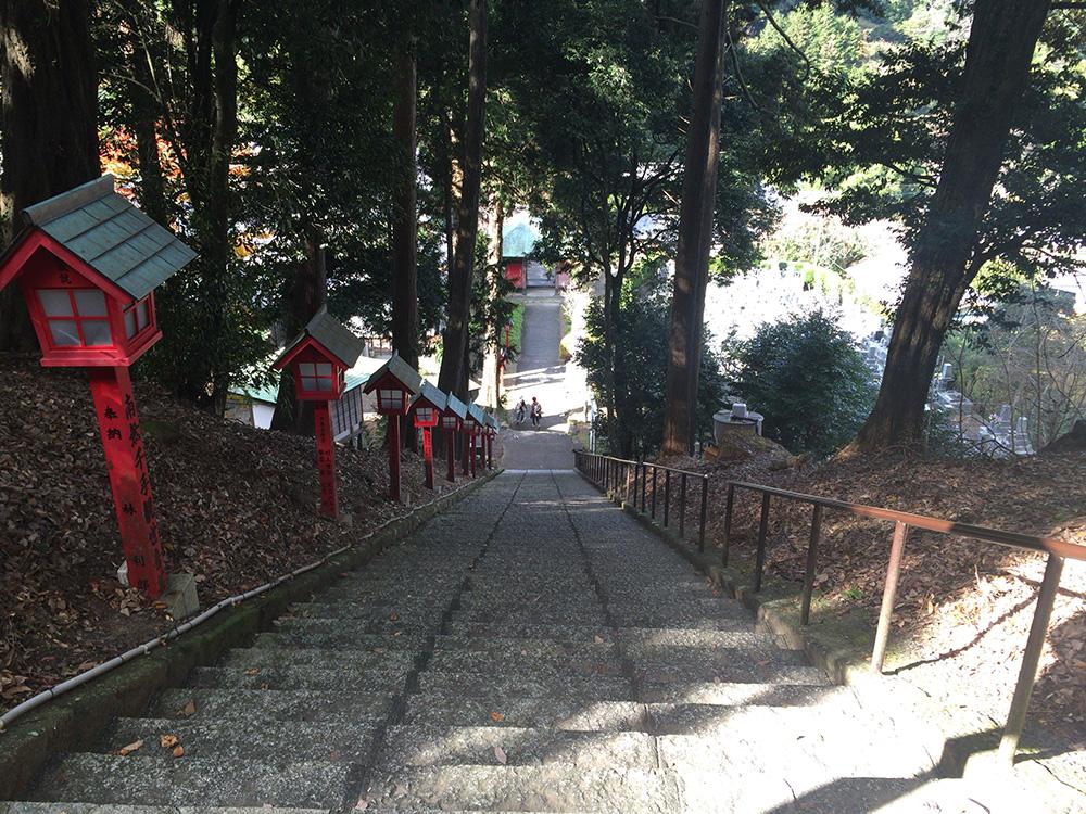 nihondaira-hikingcourse50