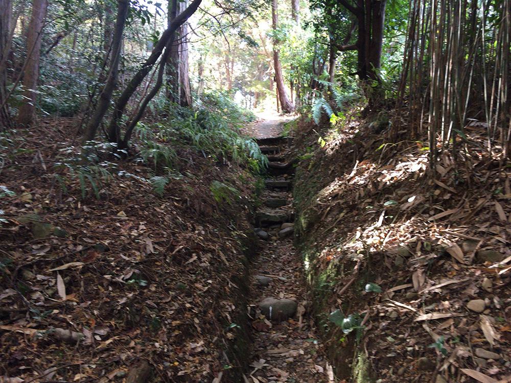 日本平ハイキングコース-写真