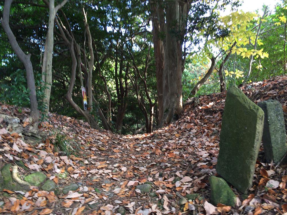 日本平ハイキングコース-順路