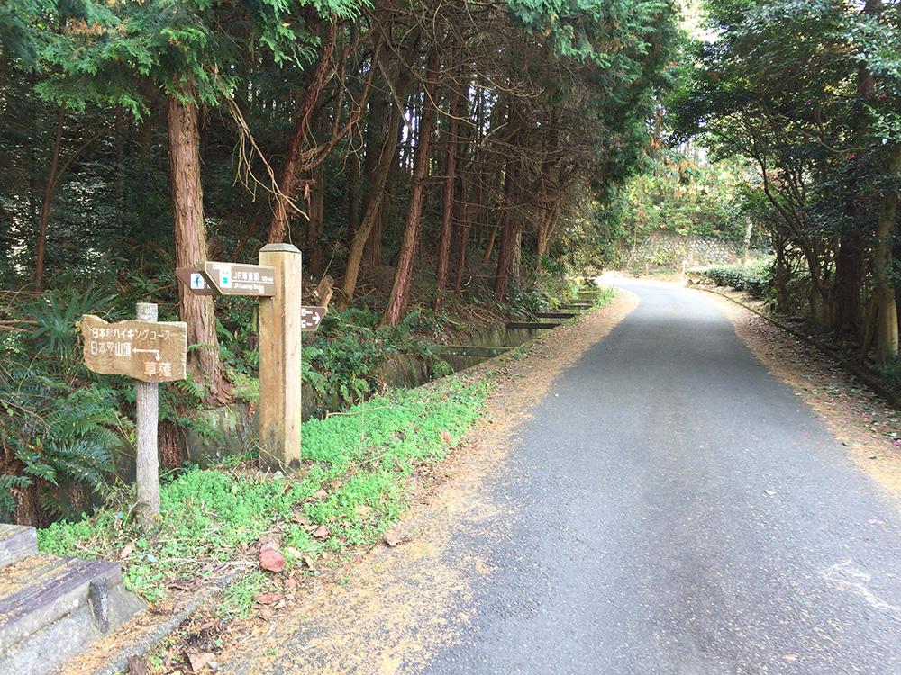 日本平ハイキングコース-一般道へ合流