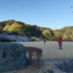 貝立公園 凧揚げ