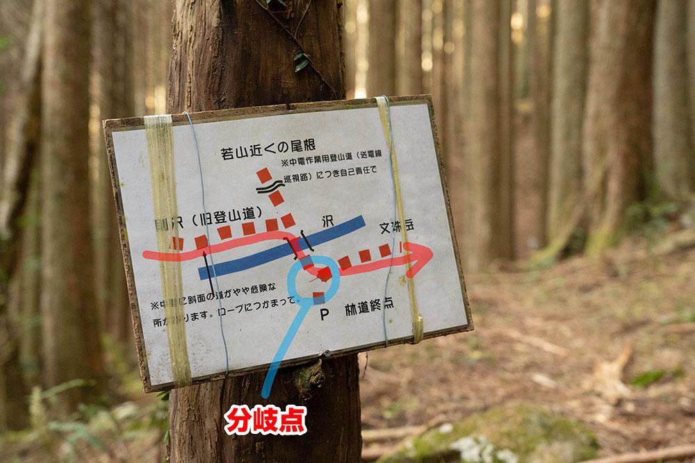 竜爪山 則沢登山口 林道からのショートカットが!