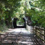 井川湖畔遊歩道 観光ウォーキング